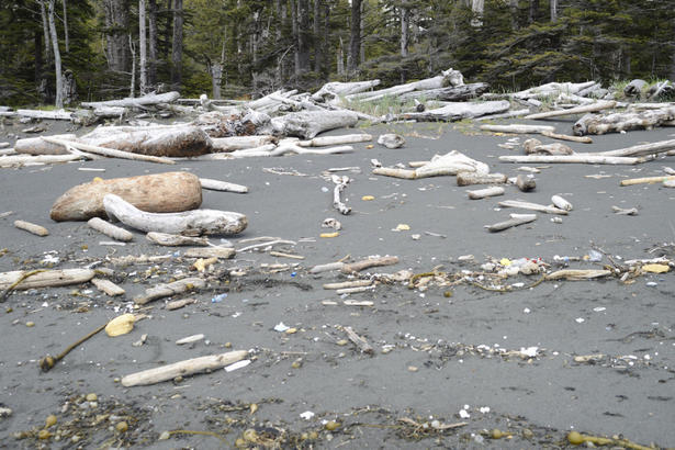BC debris field